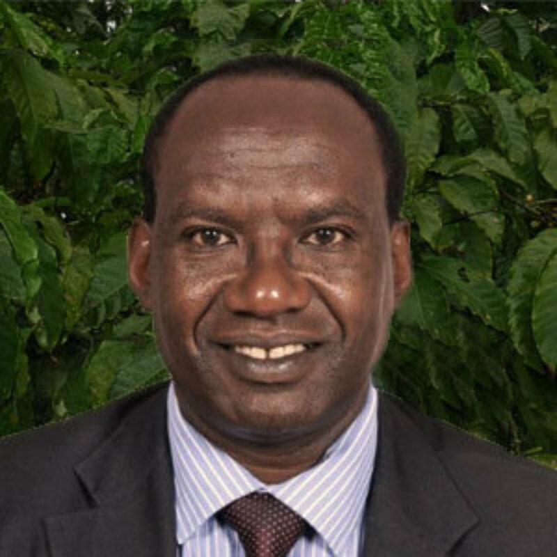 Dr Kimemia Ii